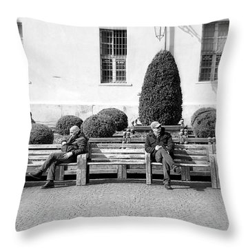 Unchallanged Throw Pillow by Valentino Visentini