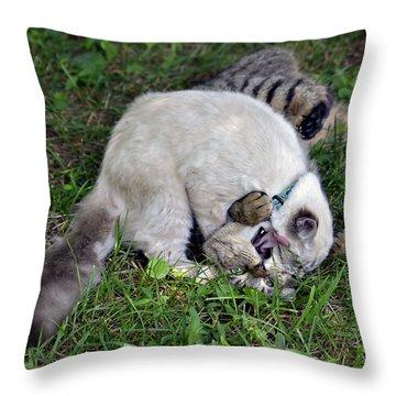 Uncle Uncle Uncle Throw Pillow by Susan Leggett