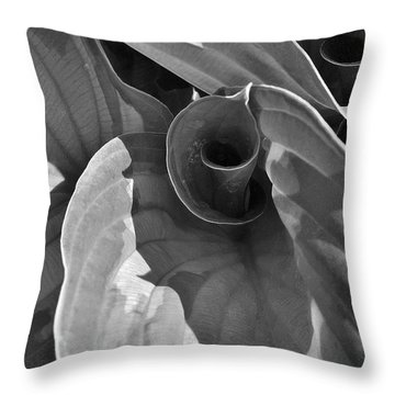 Uncoiling Hostas Throw Pillow