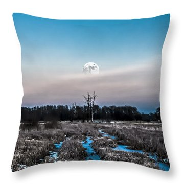 Throw Pillow featuring the photograph Under Cold Moonlight In Blue by Julis Simo