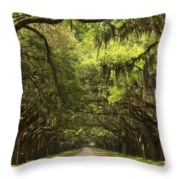 Under The Ancient Oaks Throw Pillow by Adam Jewell