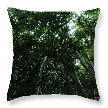 Under The Bamboo Haleakala National Park  Throw Pillow by Vivian Christopher