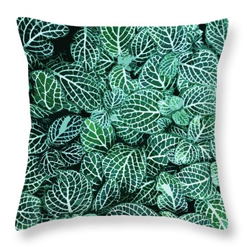 Ha Throw Pillow by Julio Lopez