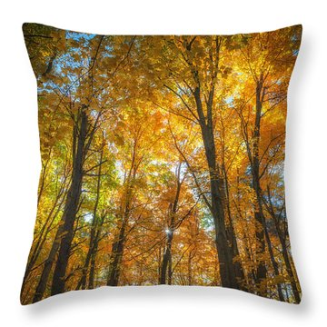 Under The Golden Canopy Throw Pillow