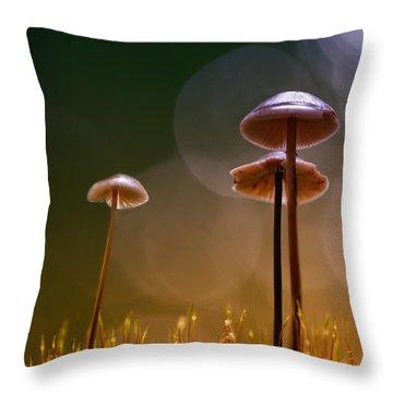Under The Mushroom Throw Pillow by Kent Mathiesen