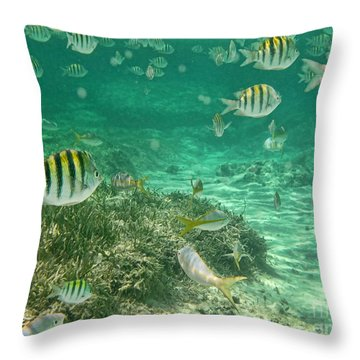 Under The Sea Throw Pillow by Peggy Hughes