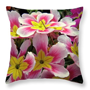 Throw Pillow featuring the photograph Under The Sunlight by Zafer Gurel