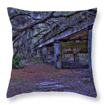 Under The Suwannee River Bridge Throw Pillow