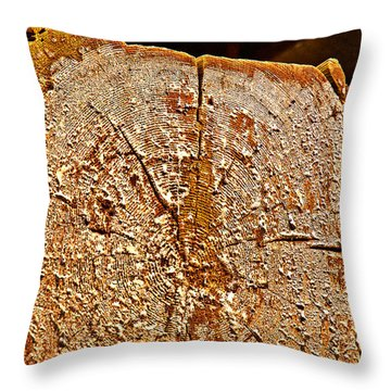 Throw Pillow featuring the photograph Under The Tracks by Lena Wilhite
