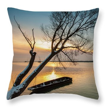Under The Tree Throw Pillow by Davorin Mance