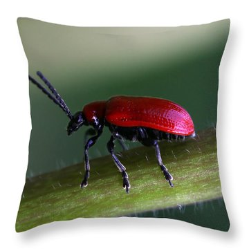 Under Way Throw Pillow