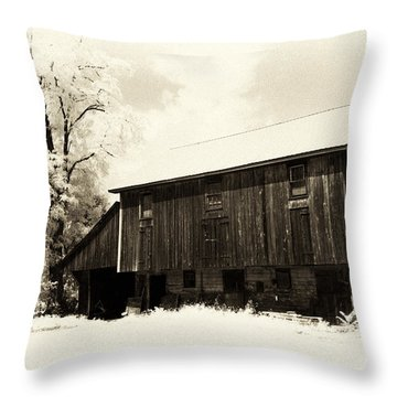 Underground Hideout Throw Pillow by Paul W Faust -  Impressions of Light