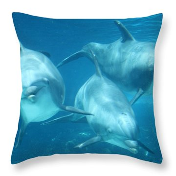 Underwater Dolphin Encounter Throw Pillow