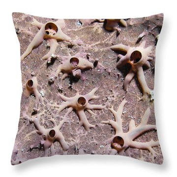 Underwater Mystery Throw Pillow by Jean Noren