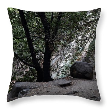 Unexpected Stop Before To Sturtevant Falls Throw Pillow