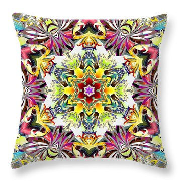 Unfolded Source Throw Pillow