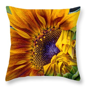 Unfurling Beauty Throw Pillow