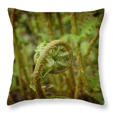 Unfurling Fern In The Garden Throw Pillow