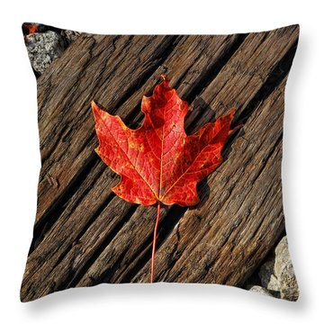 Uniquely Red Throw Pillow by Pamela Baker