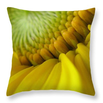 Unity Photography Throw Pillow