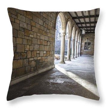 University Of Michigan Walkway Throw Pillow by John McGraw