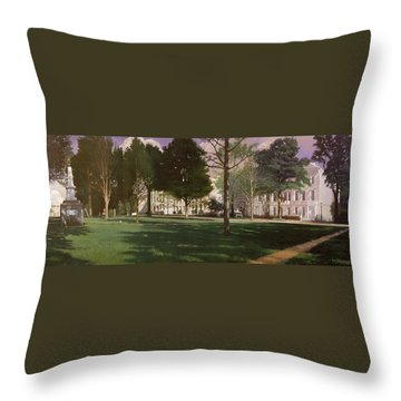 University Of South Carolina Horseshoe 1984 Throw Pillow