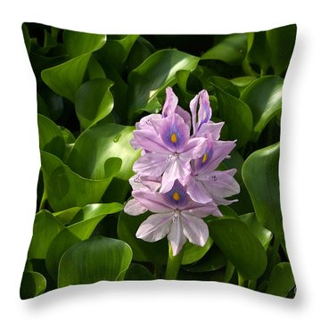 Unmanageable Beauty The Water Hyacinth Throw Pillow by Byron Varvarigos