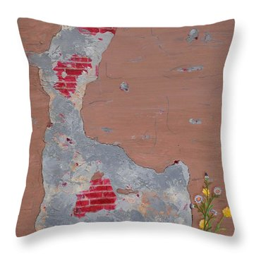 Unmasking The Red Brick Wall Throw Pillow