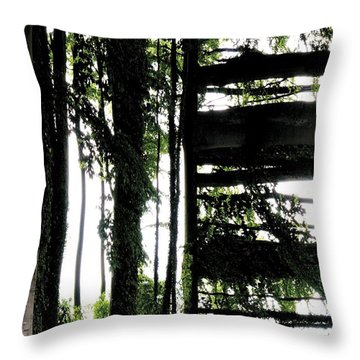 Unnatural 55 Throw Pillow by Giovanni Cafagna