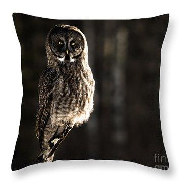 Unshaken Throw Pillow