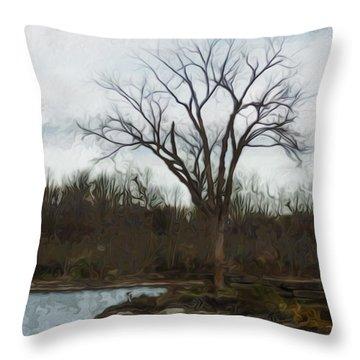 Until Spring Throw Pillow by Jack Zulli