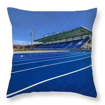 Until The Race Is Run Throw Pillow by Evelina Kremsdorf