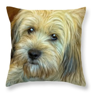 Chewy Throw Pillow by Michael Pickett