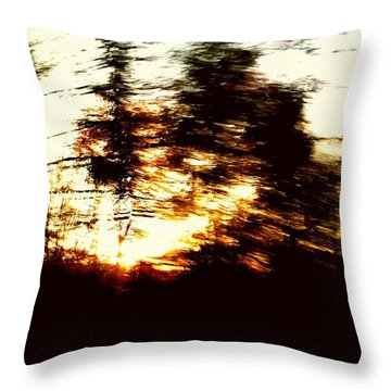 Throw Pillow featuring the photograph Untitled by Rose Wang