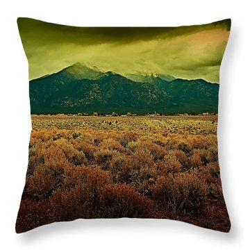 Untitled Xxv Throw Pillow