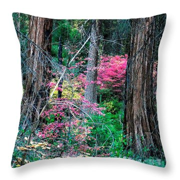 Throw Pillow featuring the photograph Unttiled by Kristen R Kennedy