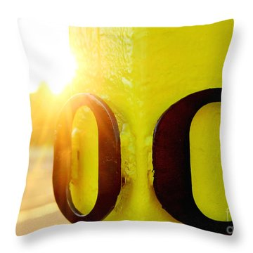 Uo 6 Throw Pillow by Michael Cross