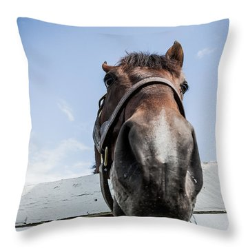 Up Close Throw Pillow by Alexey Stiop