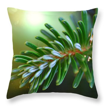 Up Close Evergreen Branch Throw Pillow