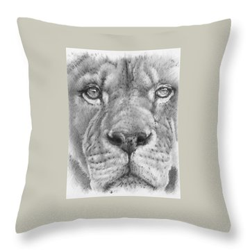 Up Close Lion Throw Pillow by Barbara Keith