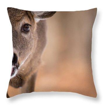 Up Close White Tail Throw Pillow
