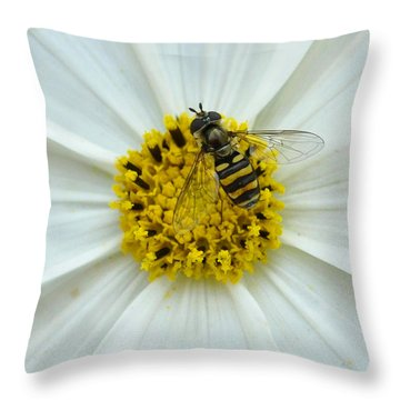 Up Close With The Bee And The Cosmo Throw Pillow