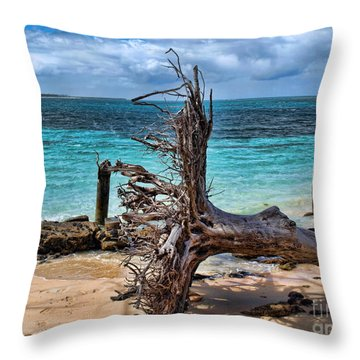 Throw Pillow featuring the photograph Up Rooted by Trena Mara