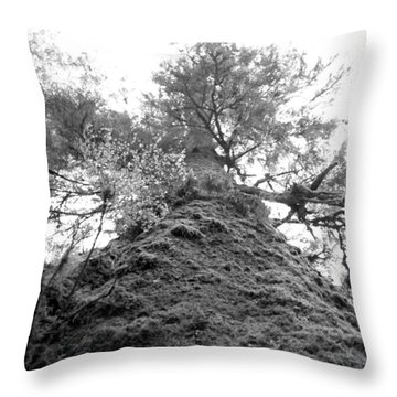 Throw Pillow featuring the photograph Up by Tarey Potter