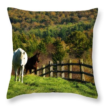 Throw Pillow featuring the photograph Up The Hill by Joan Davis