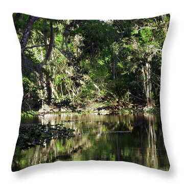 Up The Lazy River  Throw Pillow