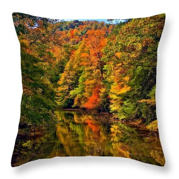 Up The Lazy River Painted Throw Pillow by Steve Harrington