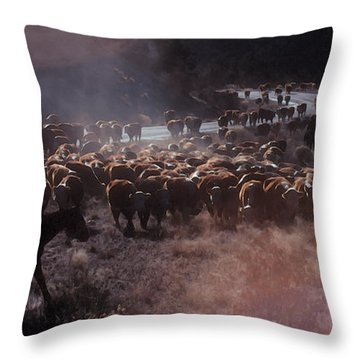 Up The Road Throw Pillow by Jerry McElroy