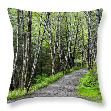 Throw Pillow featuring the photograph Up The Trail by Cathy Mahnke
