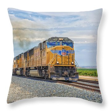 Throw Pillow featuring the photograph Up4421 by Jim Thompson